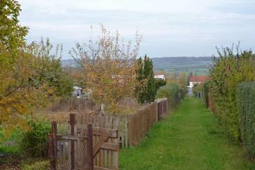 Freie Gärten in der Kleingartensparte 'Erholung'