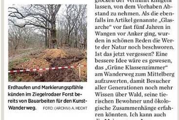 Den Wald Wald sein lassen